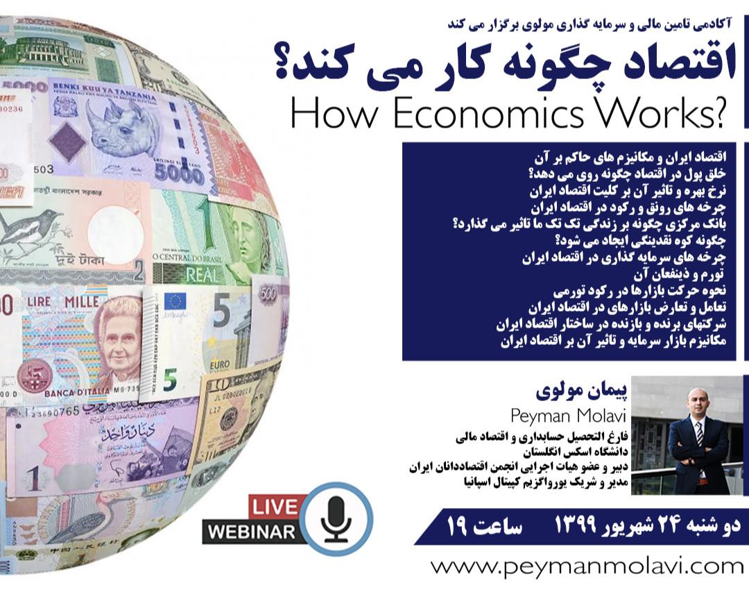 وبینار اقتصاد چگونه کار می کند؟