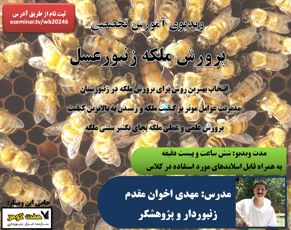 ویدیوی آموزش تخصصی پرورش ملکه زنبور عسل